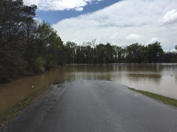 Flooding on Cypress Gardens Road