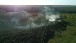 Large grass fire off Ellerbe Road