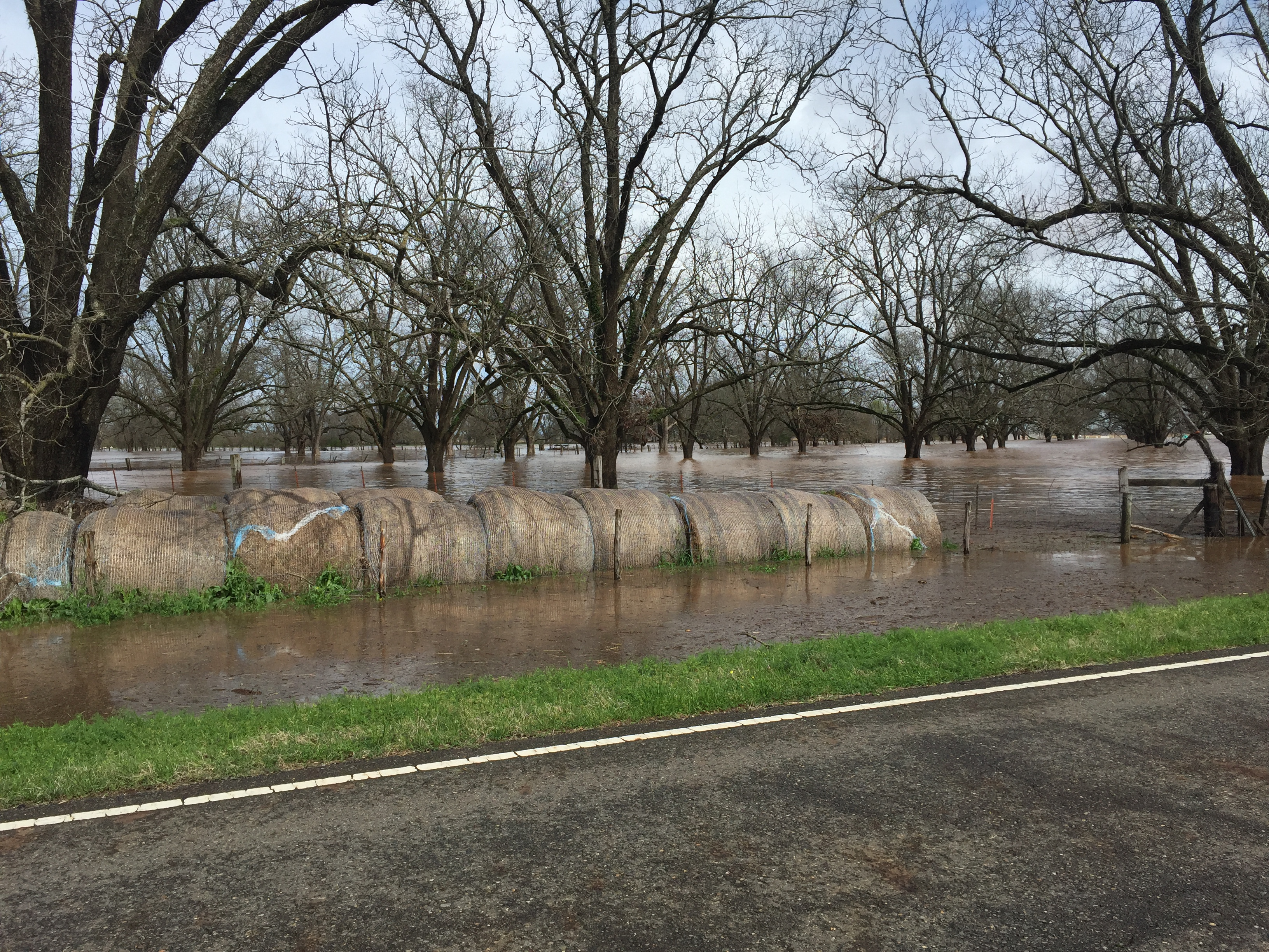 Flooding on Ellerbe Road