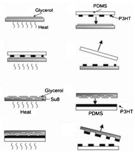 Polymer Transfer Printing_ Application t