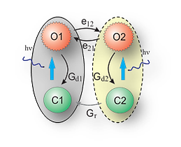 biopohysical 1.png