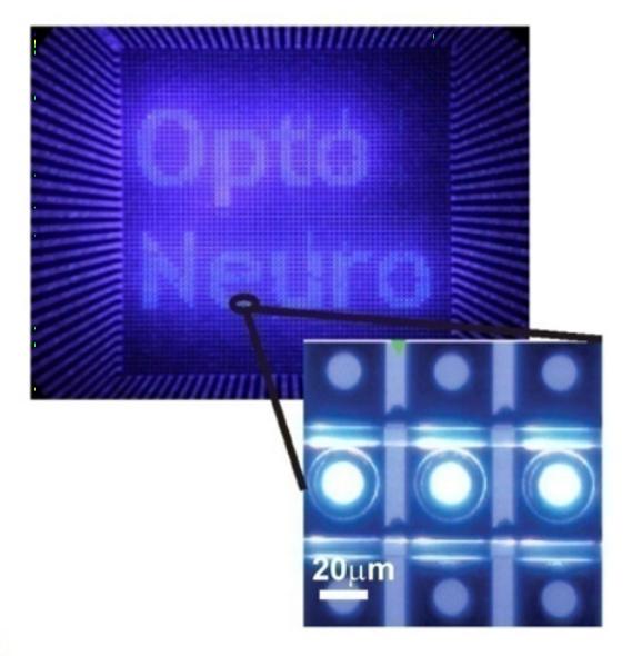 Multi-site optical excitation using ChR2