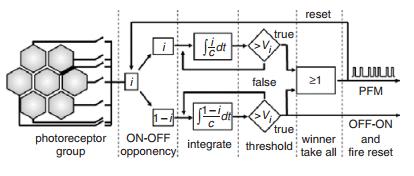 Adaptive ON-OFF spiking photoreceptor