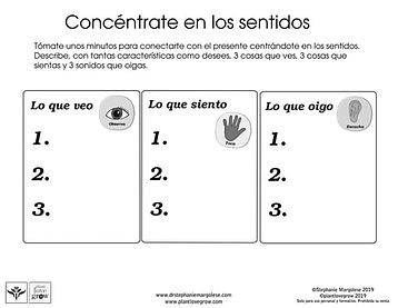 T2 spanish-focus-on-your-senses.jpg