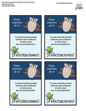 T2 SP owl-certificate-sheet-spanish_orig