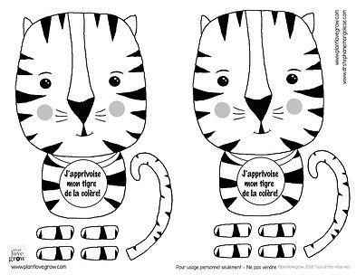 T1 - J'apprivoise mon tigre.jpg