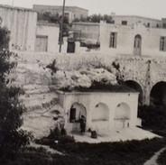 Yia Yia's Taverna Brooklyn Chef Michalakis Sarris home in Cyprus 1.JPG