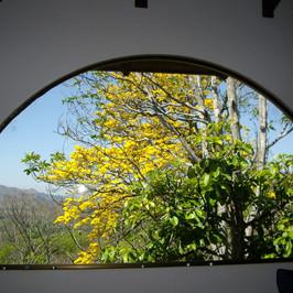 Cortiza view from Dining.JPG.jpg