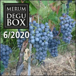 Degubox 6/2020