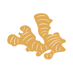 icon-ginger-1.png