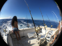 Kai Bear Deep Sea Sport Fishing