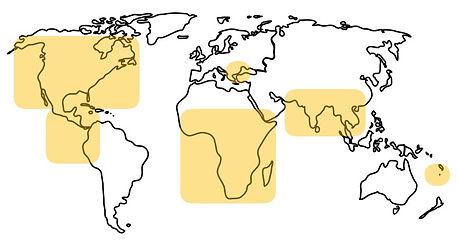 GCA map.jpg