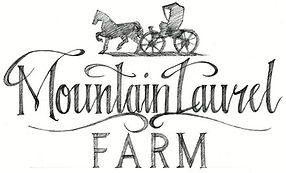 mountain laurel farm destination weddings lodging film location Barn Weddings in Tennessee 678 532 8194