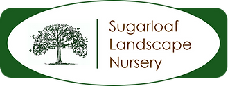 Sugarloaf Logo.png