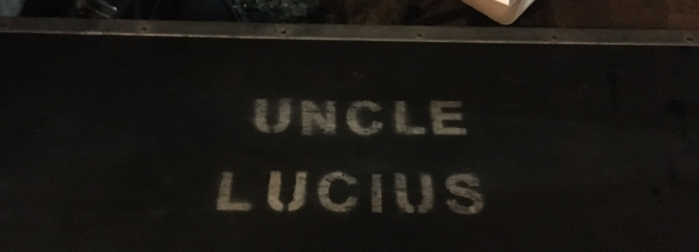 lucius luggage.JPG
