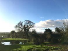 Autumn view of Warden Farm pond