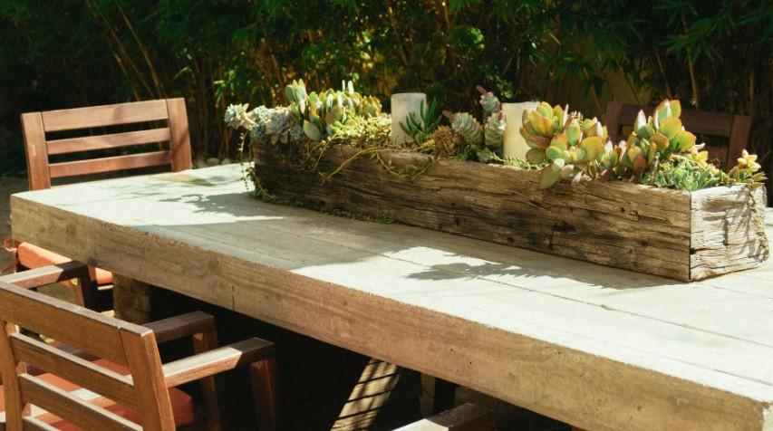 Jardim de suculentas numa viga de demolição em cima da mesa | Foto Pexels