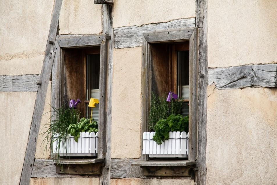 Horta em vasos na janela | Foto Pixabay
