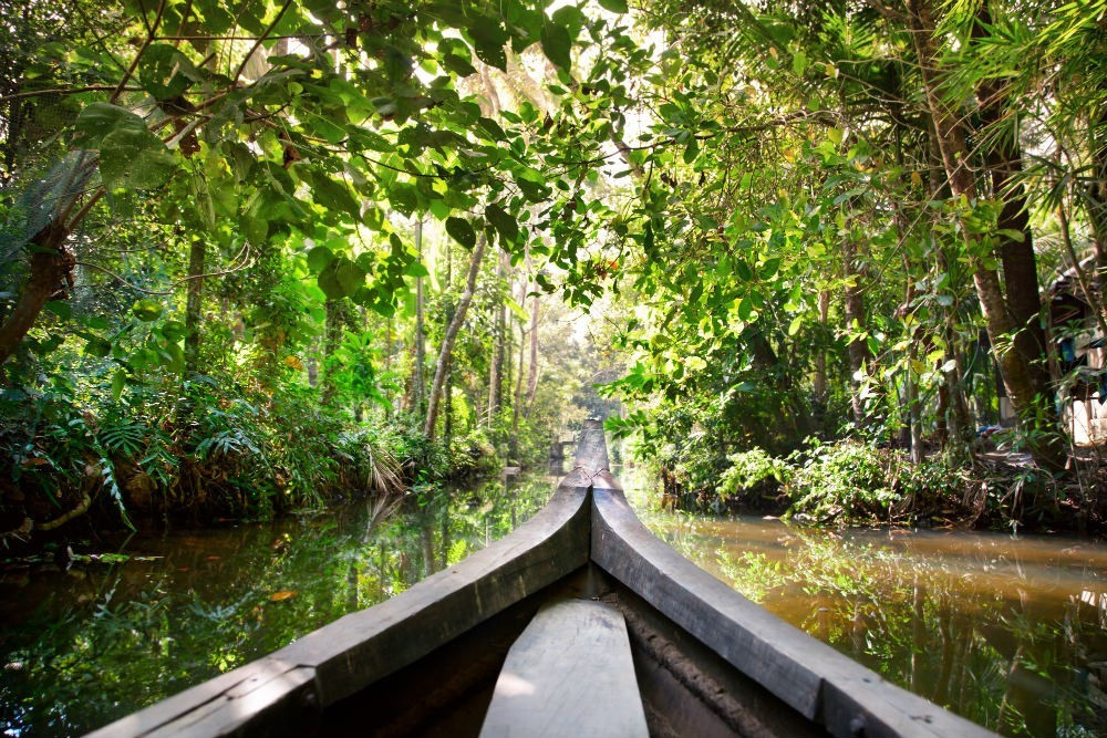 Floresta Amazônica | Foto Shutterstock
