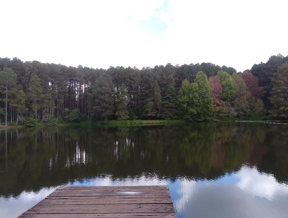 © Parque Witeck Lago Mágico   Foto Robriane Lara