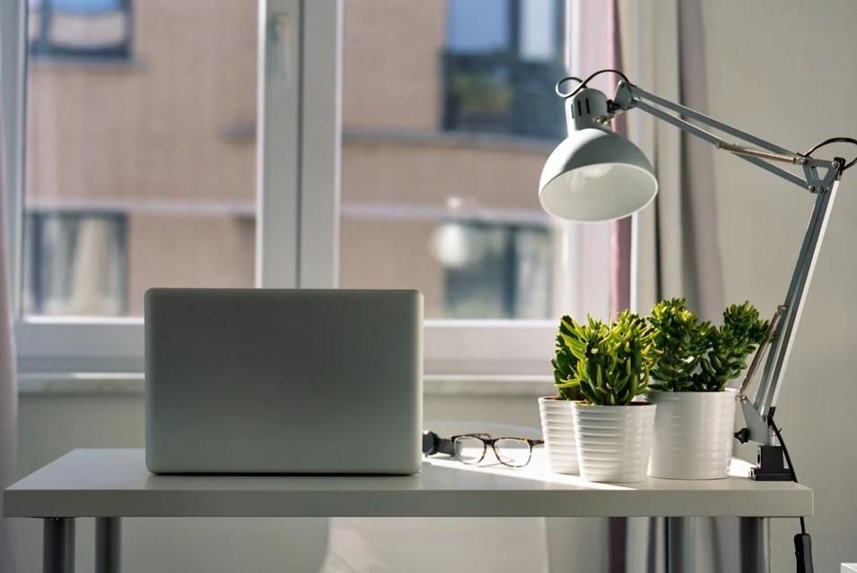 Local de estudos online, em casa, próximo a janela decorado com suculentas e luminária de mesa | Foto Pixabay