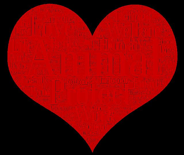 Nuvem de palavras-chave sobre trabalho de proteção animal | Foto Pixabay