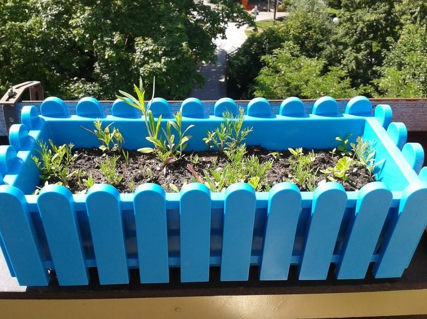 Caixa plástica para ervas e temperos no terraço | Foto Pixabay