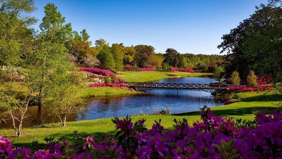 Jardim florido de um parque com lago, ponte e muitas árvores | Foto Pixabay