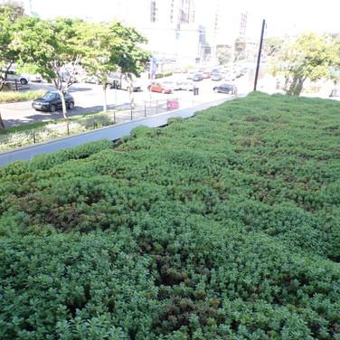 Telhado Verde   Garagem Subsolo   Planta Boldo