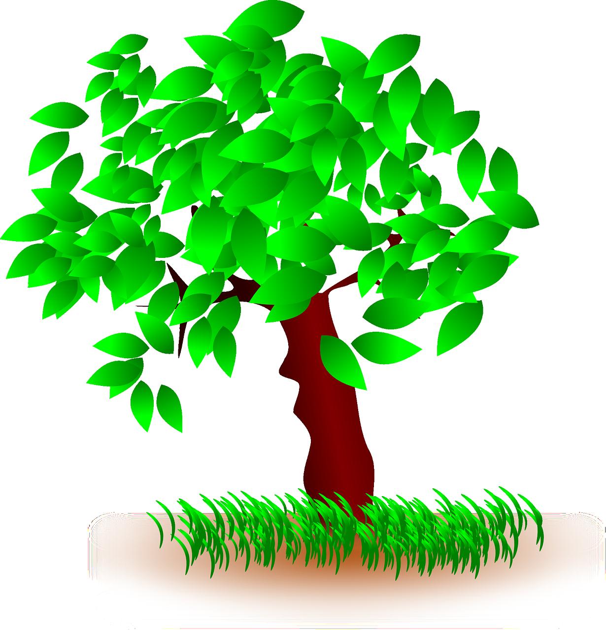 Árvore_Encantada