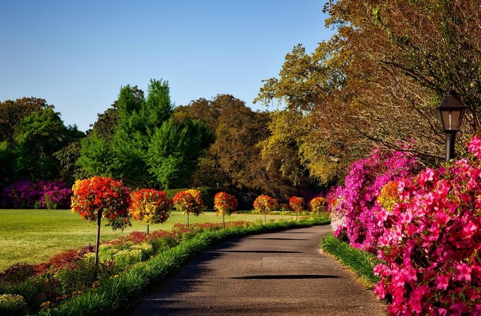 Caminho no jardim envolvido por flores, arbustos e árvores | Foto Pixabay