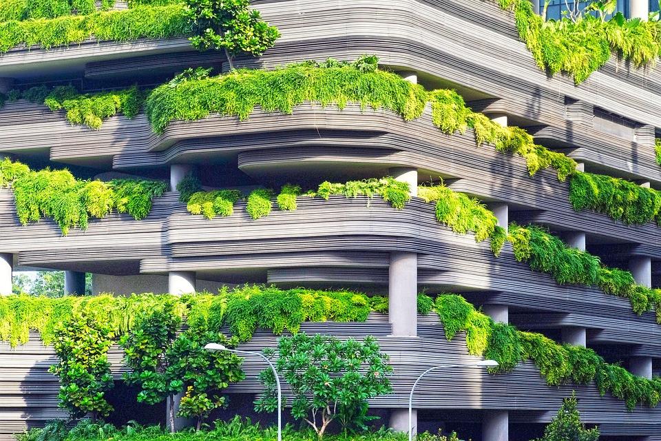 Fachada Verde de Edifício | Foto Pixabay