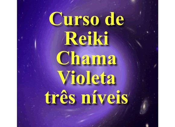 Curso de Reiki Chama Violeta 3 Níveis
