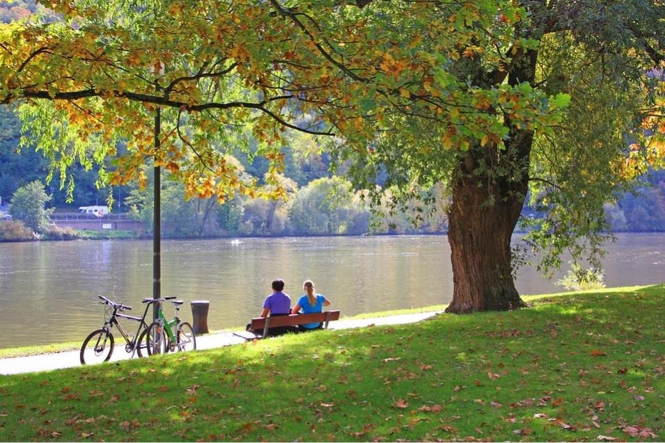 Casal de ciclistas sentados à sombra de uma árvore num parque | Foto Pixabay