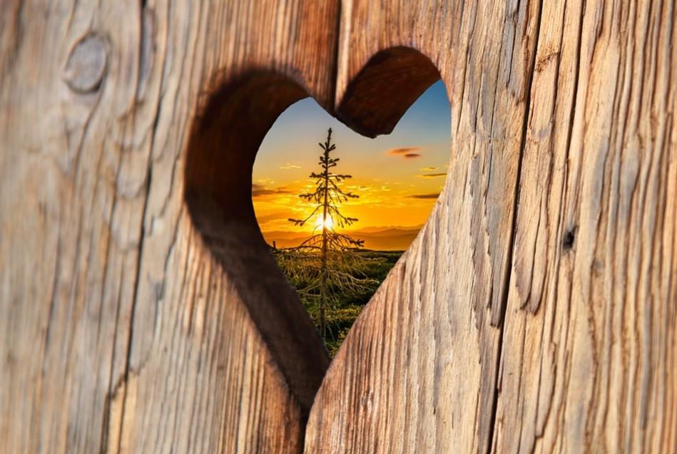 Um coração com um sol em seu interior   Foto Pixabay