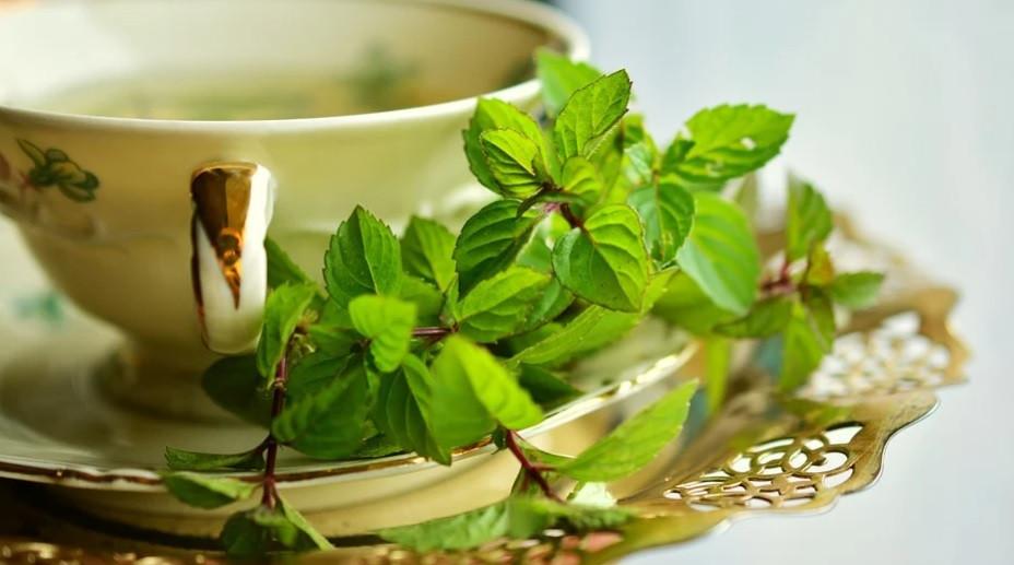 Xícara elegante com Chá Medicinal   Foto Pixabay