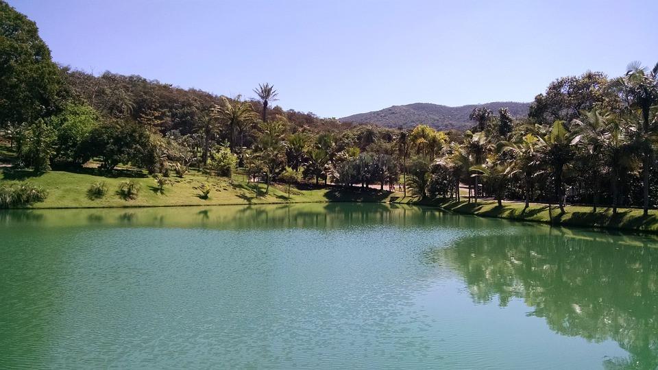 Vista do lago - Parque Inhotim | Foto Pixabay