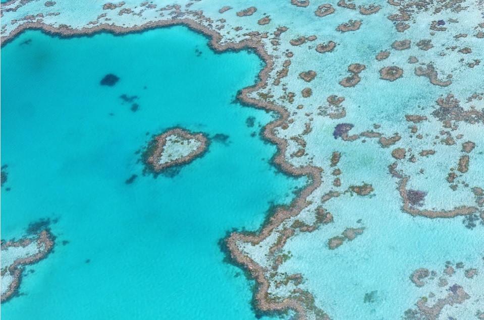 Grande Barreira de Corais – Austrália | Foto Pixabay
