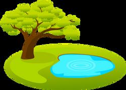 Árvore_com_Lagoa_em_Volta