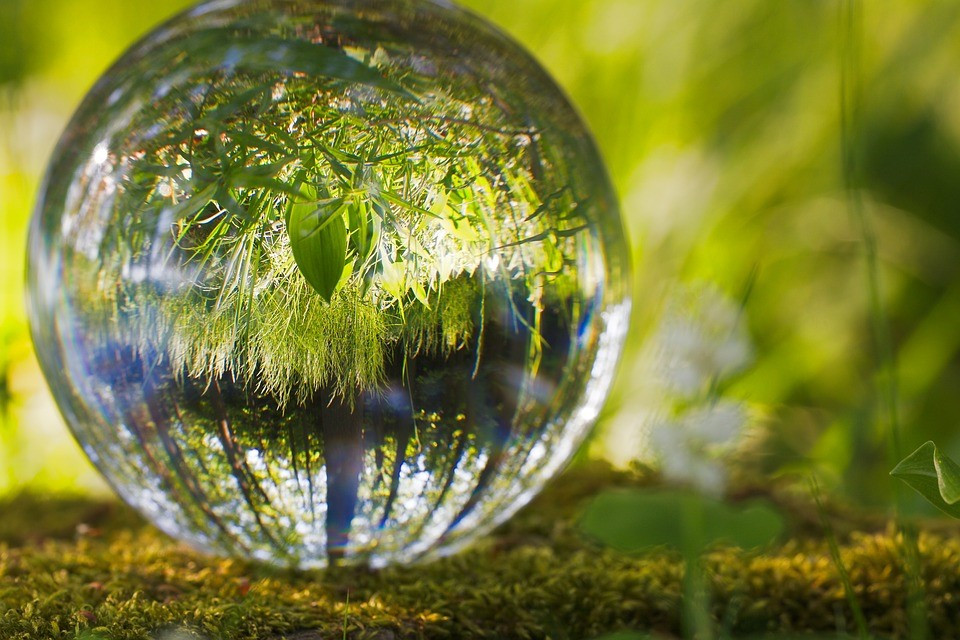 Meio Ambiente   Foto Pixabay