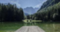 Meta e Missão do Site Dimensão da Natureza