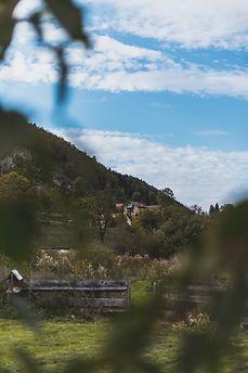 paysage.jpg