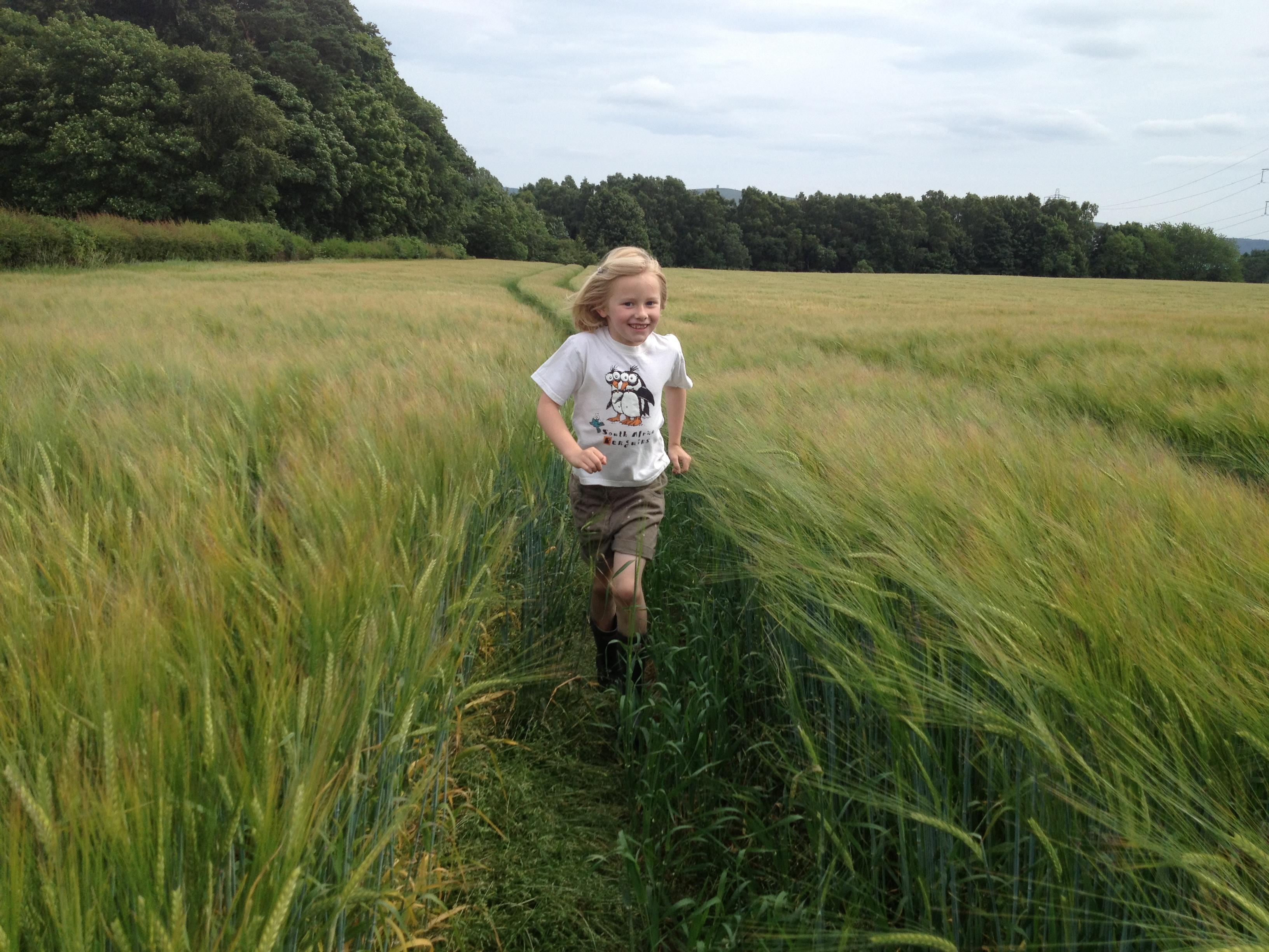 Daisy running through the fields