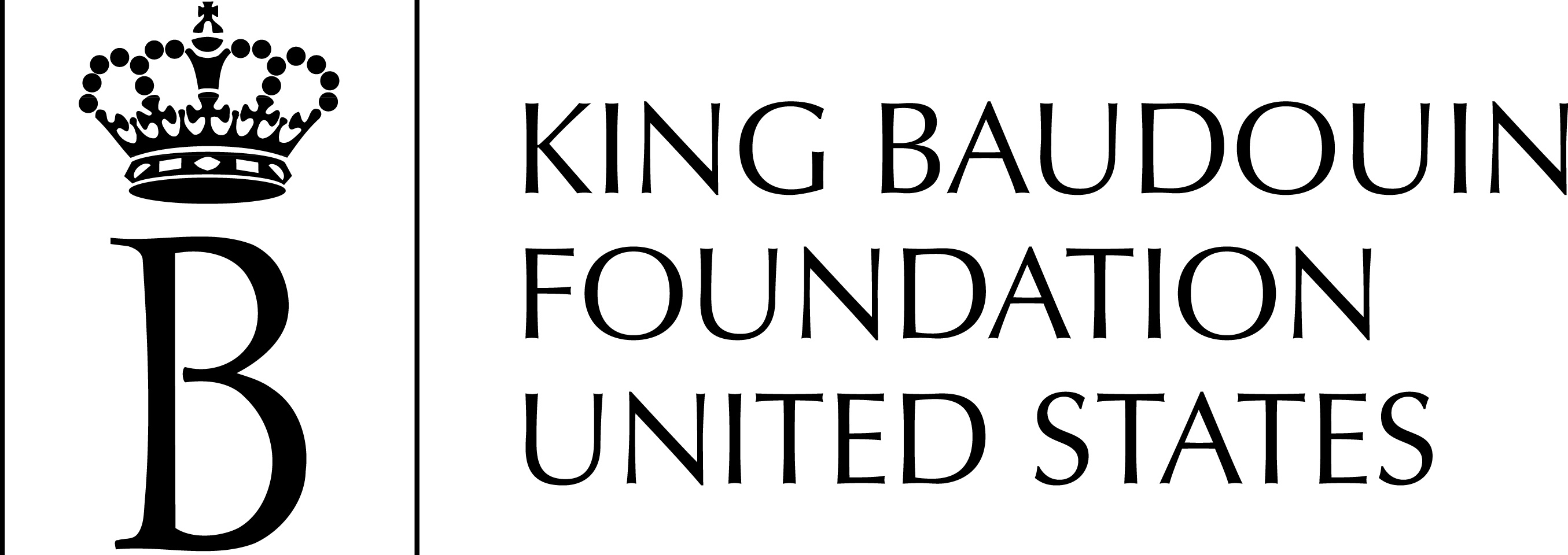 King Baudoin Foundation United State