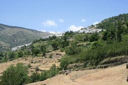 Bed en breakfast bij Belgen in Andalusie - B&B Cortijo Valavero