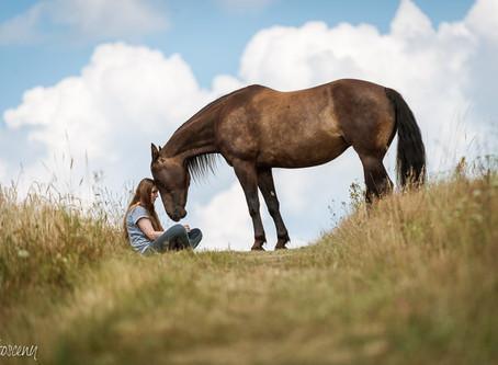 Sesja plenerowa z końmi