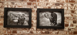 Picture Wall Frames
