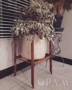Pot Plant Stands