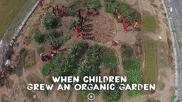 HLC CHILDREN GARDEN.jpg