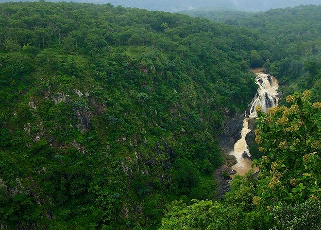 Moyar river from Gorge.jpg